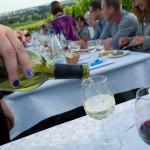 Weinprobe-im-Weinberg-Schnitzel-und-Wein-Bensheim (12)
