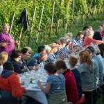 Weinprobe-im-Weinberg-Schnitzel-und-Wein-Bensheim (14)