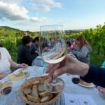 Weinprobe-im-Weinberg-Schnitzel-und-Wein-Bensheim (17)