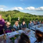 Weinprobe-im-Weinberg-Schnitzel-und-Wein-Bensheim (19)