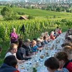 Weinprobe-im-Weinberg-Schnitzel-und-Wein-Bensheim (2)