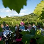 Weinprobe-im-Weinberg-Schnitzel-und-Wein-Bensheim (21)