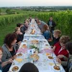 Weinprobe-im-Weinberg-Schnitzel-und-Wein-Bensheim (9)